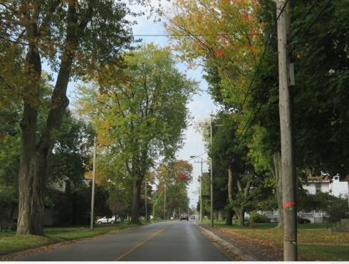 Hwy 33 near Wellington, Ontario
