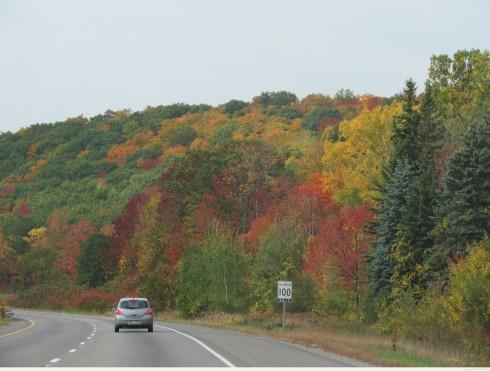 Hwy 401 near Brighton, Ontario