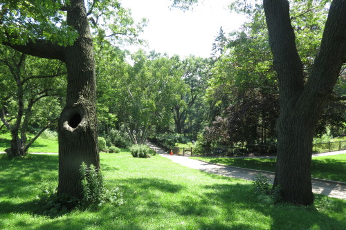 High Park at Parkside Drive and Bloor Street in Toronto