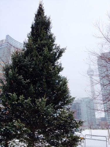Christmas tree at Canoe Landing Park, Toronto