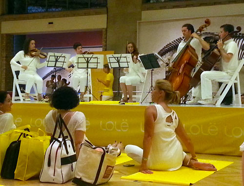 Classical music accompaniment at Lole White Tour at the ROM