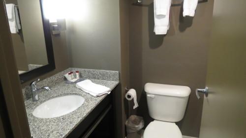 Deluxe Queen Bathroom at Ramada Plaza Niagara Falls Canada