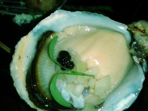 California oyster, photo Grace Pak