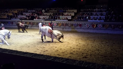 Andalusian beauty takes a bow at Medieval Times