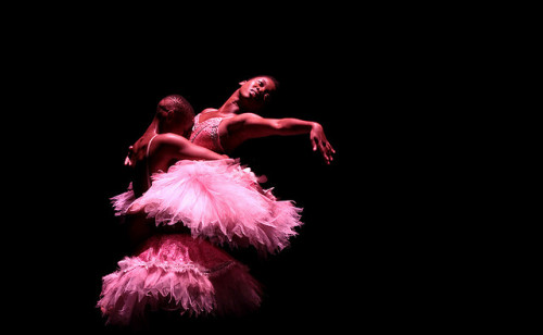 The transformative Dying Swan scene in The Meal, part of Spotlight South Africa by Canadian Stage, photo John Hogg, rockitpromo
