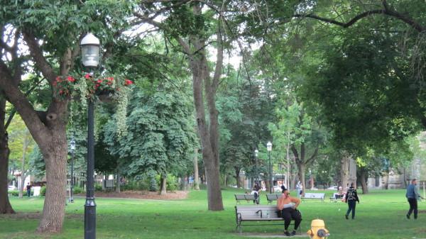 St. James Park, Toronto
