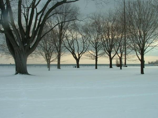 Winter along the Martin Goodman Trail in Toronto