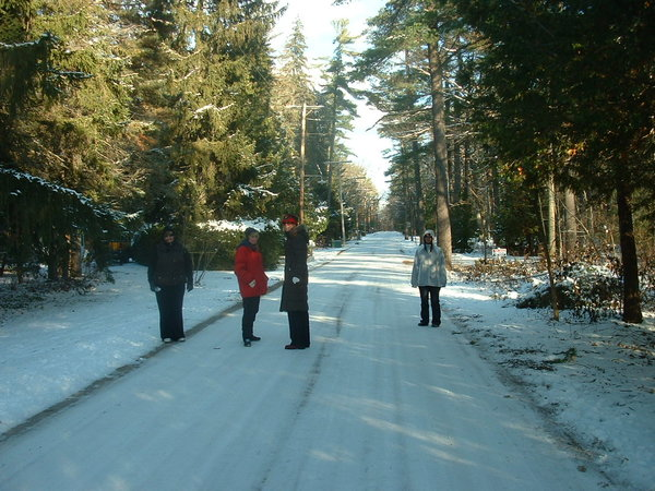 Walking is a great way to stay fit in winter, photo Lori Bosworth