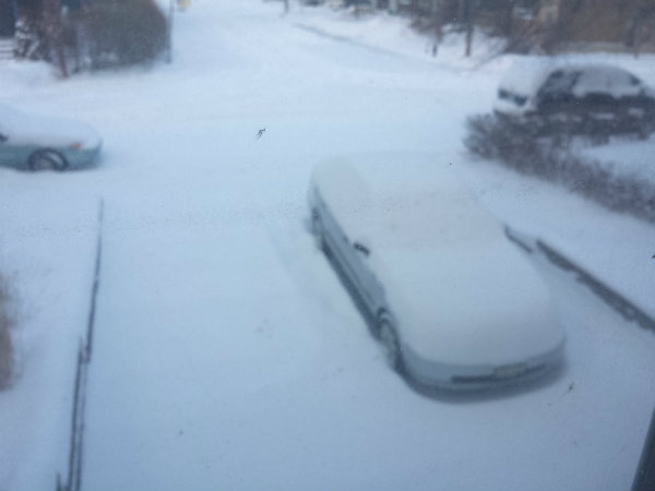 Lots of snow to be shoveled on driveway.