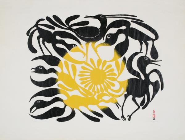 Kenojuak Ashevak, The Arrival of the Sun, 1962. Stonecut on paper, Sheet 63 × 82.6 cm. Gift of Samuel and Esther Sarick, Toronto