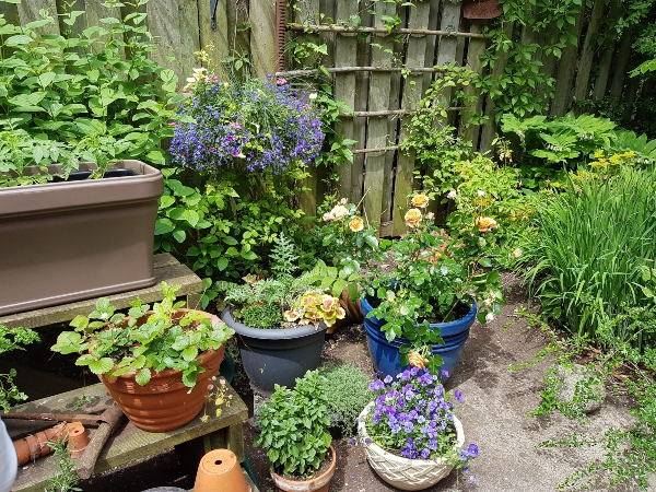 I love the arrangement of these garden posts in a garden at Mark's Choice Through The Garden Gate 2019