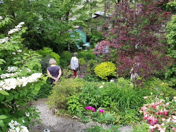 This garden is situated on a heavily sloped backyard on Mark's Choice Through The Garden Gate 2019