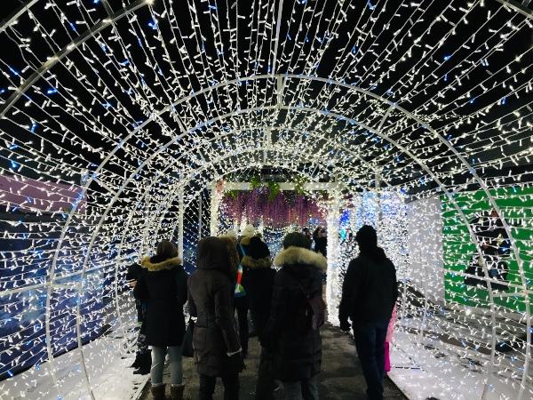 Lights tunnel Aurora Winter Festival 2019
