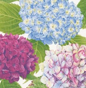 Garden Blue Napkin Luncheon 20 CT Multicolor