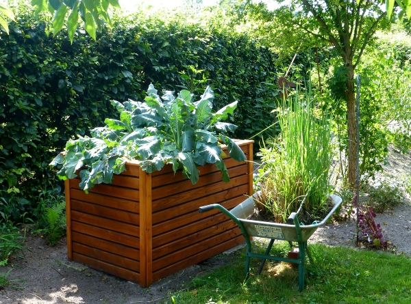 Keep animals out of your vegetable garden by using a raised bed, garden-883095_1280 photo by _a href=_https___pixabay.com_users_Counselling-440107__utm_source=link-a