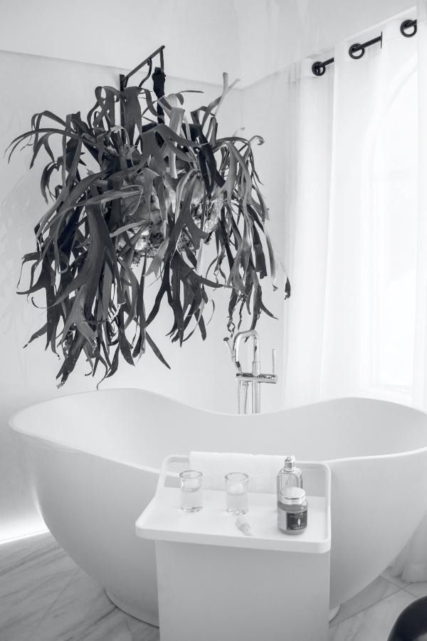 Bathroom design trends for 2021 include Jungle Bathrooms, photo pexels-luis-ruiz-1416244