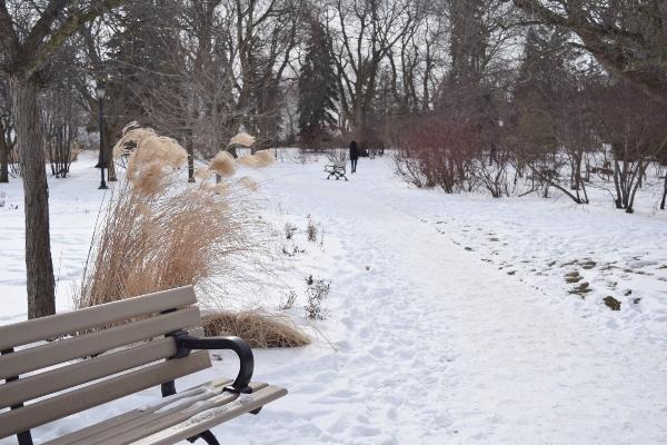 Enjoying a winter walk at Rosetta McClain Gardens in Toronto.