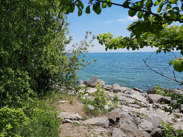 Ashbridges Bay Park on Lake Ontario is one of the most popular Toronto east end parks.
