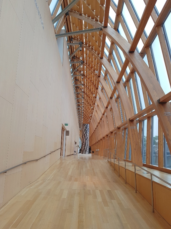 Galleria Italia at Art Gallery of Ontario features laminated timber and glass.
