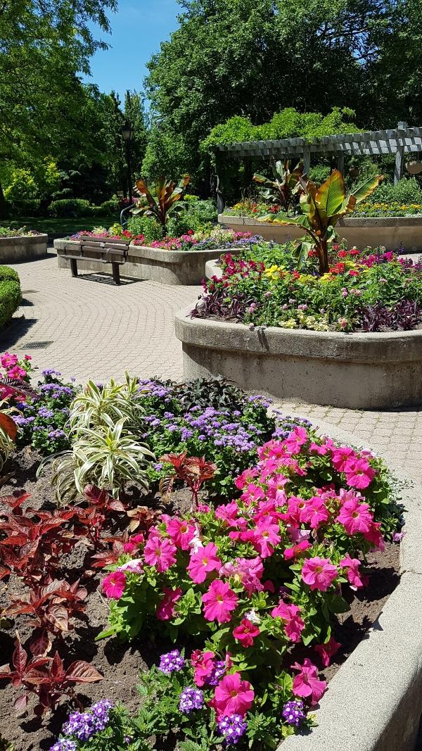 The flower beds near the rock waterfall at Rosetta McClain Gardens.
